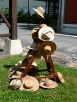 chapeau-genealogie-abbaye-maumont