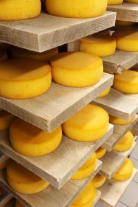 Le fromage de l'Abbaye du Mont des Cats