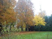 oriocourt parc automne-amélie