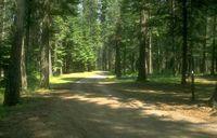 chemin campagne abbaye maumont