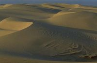 desert sahara abbaye maumont